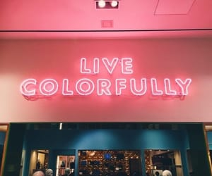 pink, sign, and neon image