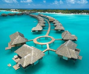 four seasons, france, and french polynesia image