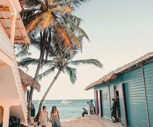beach, holiday, and palm trees image