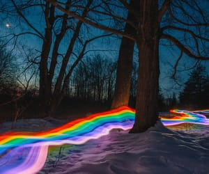 rainbow, woods, and forest image