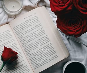 aesthetic, books, and pretty image