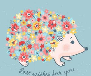 hedgehog, wallpaper, and best wishes image