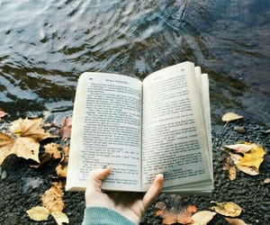 book, read, and fall image