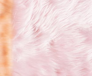 background, pink, and texture image