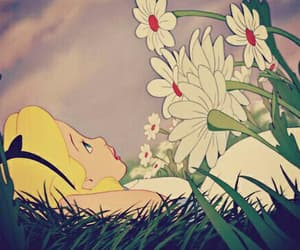 alice, disney, and flowers image