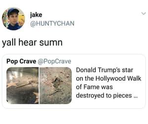 celebrity, meme, and Walk of Fame image