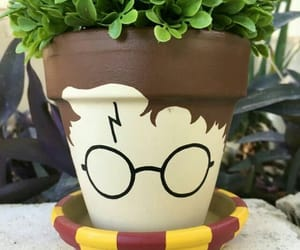 harry potter and plants image