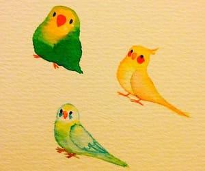 art, birbs, and lovebird image