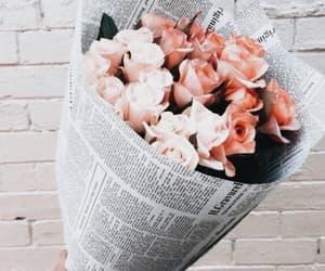 fleur, pink, and Fleurs image