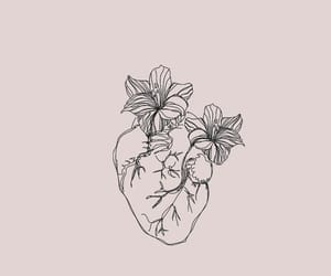 aesthetic and heart image