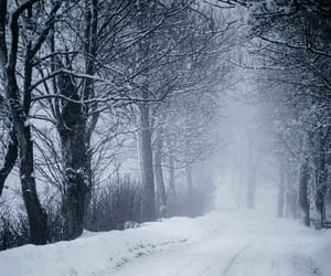 cold, road, and snow image