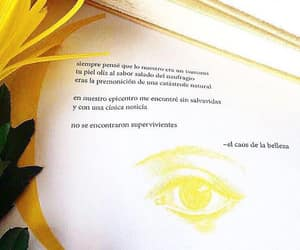 frases, libros, and citas image