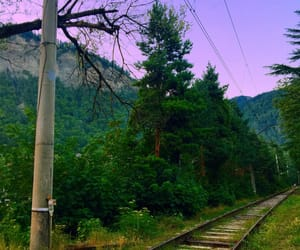 beautiful, green, and railway image