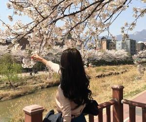 people, cherry blossom, and u.u image