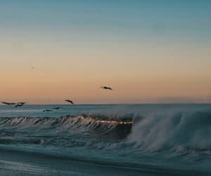 gif, life, and wave image