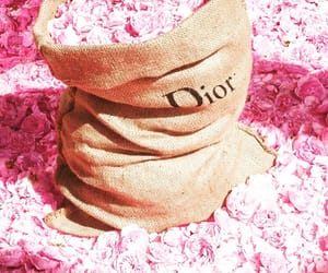 Couture, dior, and fleur image
