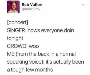 comedy, concert, and feelings image