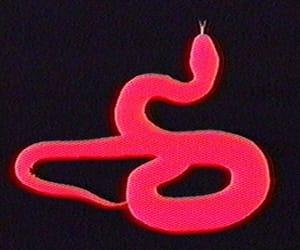 aesthetic, snake, and gif image