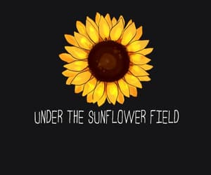 black, quotes, and sunflower image