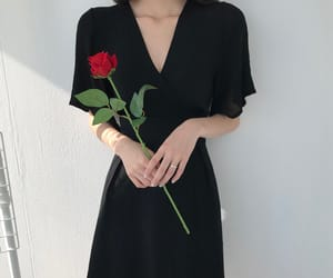 flower, rose, and clothes image