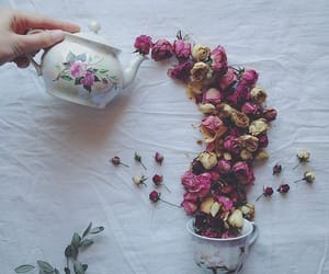 flowers, roses, and tea image