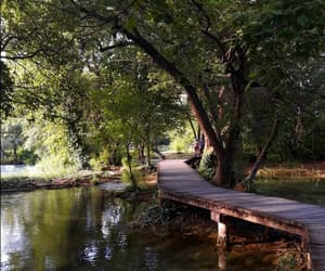 art, Croatia, and environment image