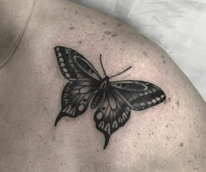 butterfly and Tattoos image