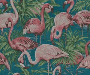 birds, flamingo, and pattern image