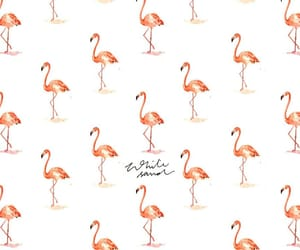 background, birds, and pastel image