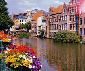 belgium, flowers, and river image