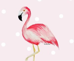 aesthetic, bird, and pink image