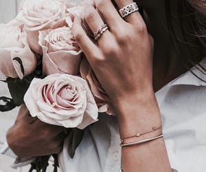 flowers, rose, and accessories image