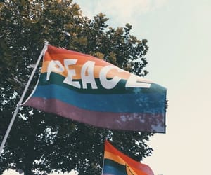 peace, lgbt, and flag image