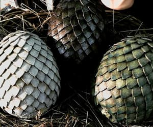 dragon, eggs, and game of thrones image