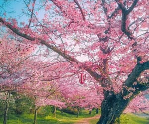 earth, flowers, and gren image