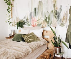 home, cactus, and decor image