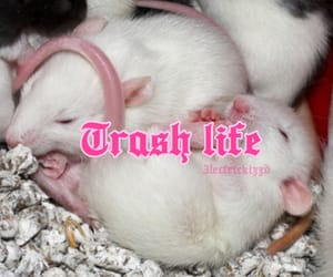 goth, pink, and theme image