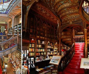 library, potter, and harry image