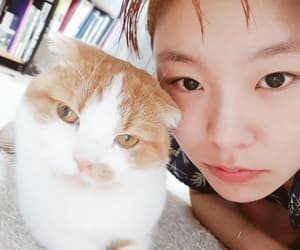 cat, girl, and kpop image