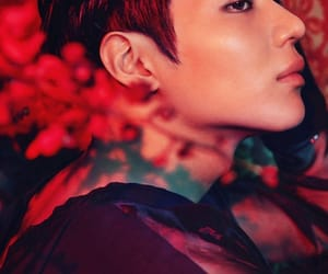 photoshoot, red, and SHINee image