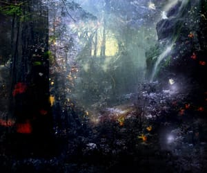 enchanted and forest image