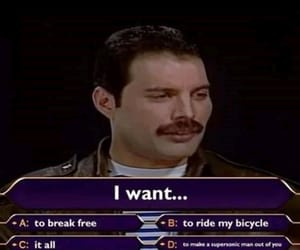 meme, Freddie Mercury, and funny image