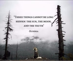 Buddha, feeling, and moon image