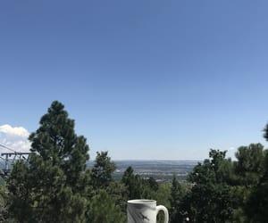 beautiful, coffee, and girl image