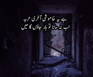 poetry, quotes, and urdu images image