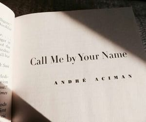 book and call me by your name image