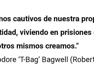 frases, prison break, and t-bag image