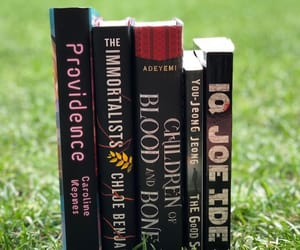 books, Providence, and the imortalists image