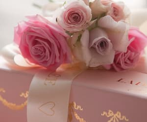 beauty, pink, and soft image