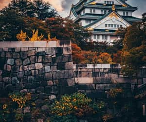 japan and beautiful image